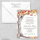 Celebration Love Nb Wedding Invitation With Envelope