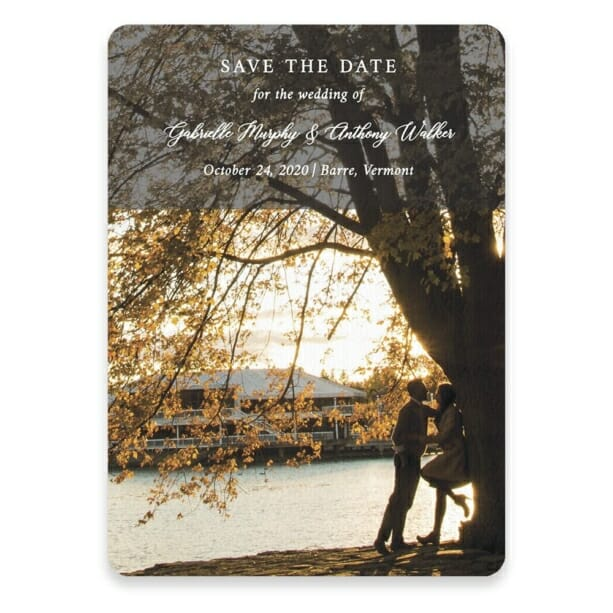 Devoted To You Save The Date Postcards