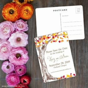 Celebration Of Love Save The Date Postcard With Back