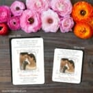 A Summer Dream 2 Save The Date Magnet Classic And Petite Size