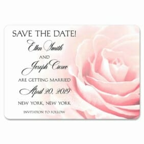 Pink Rose 1 Save The Date Magnets